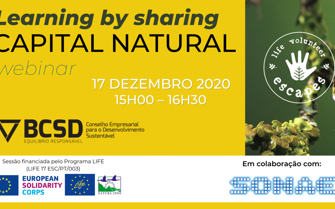 Learning by Sharing Capital Natural: BCSD Portugal & SONAE Capital