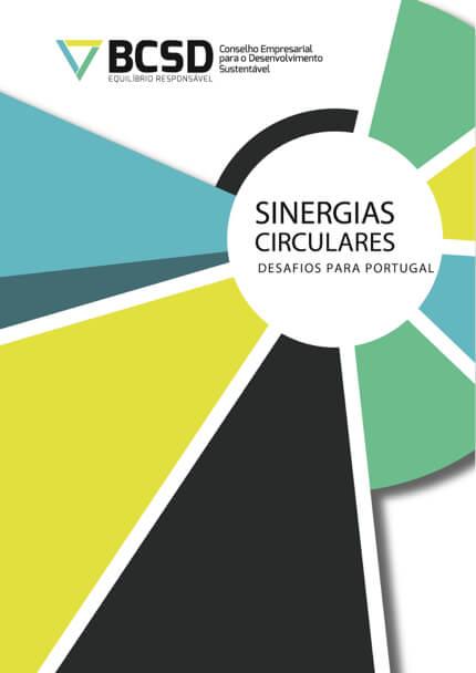 Sinergias Circulares – Relatório Não Técnico