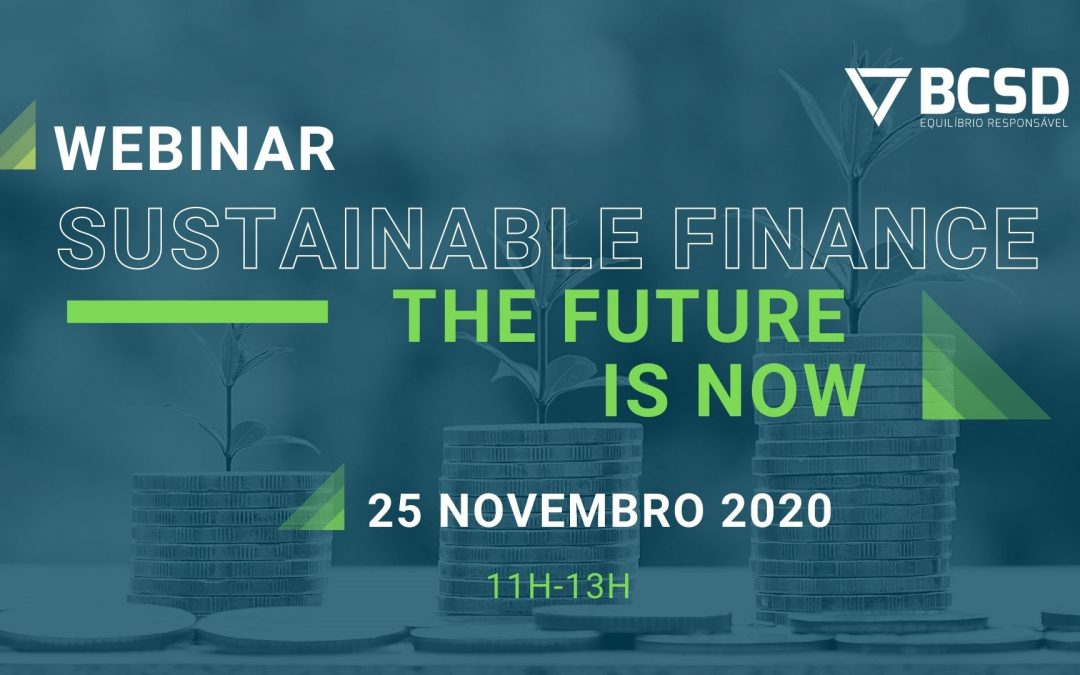 Webinar Sustainable Finance – The Future is Now