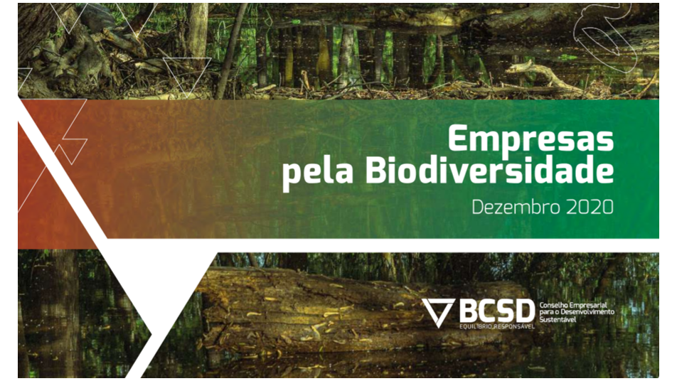 BCSD Portugal lança publicação com compromissos empresariais no âmbito do act4nature Portugal