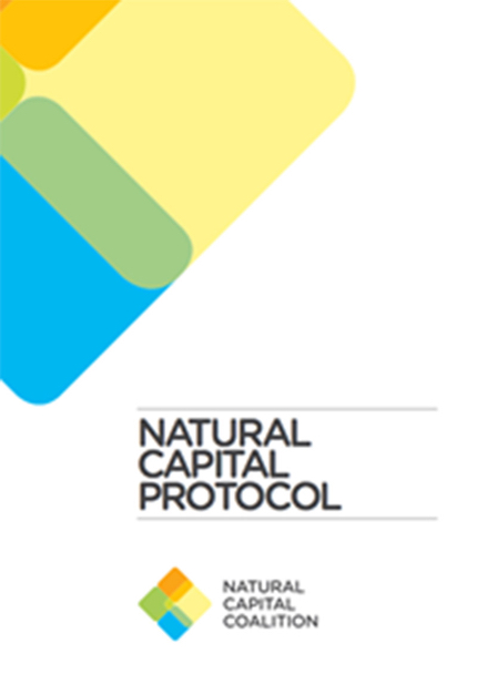 Protocolo Capital Natural