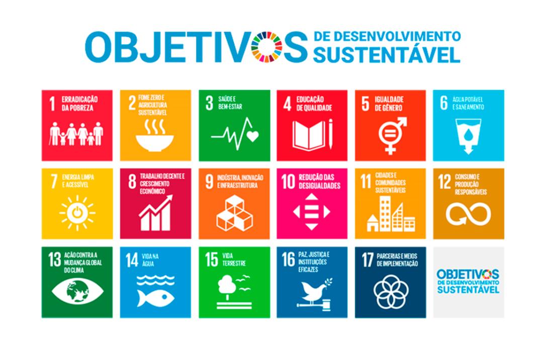 Introdução aos Objetivos de Desenvolvimento Sustentável | Crash Course